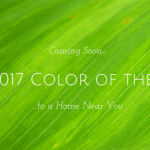 Panatone 2017 color of the year, green leaf, MGSD