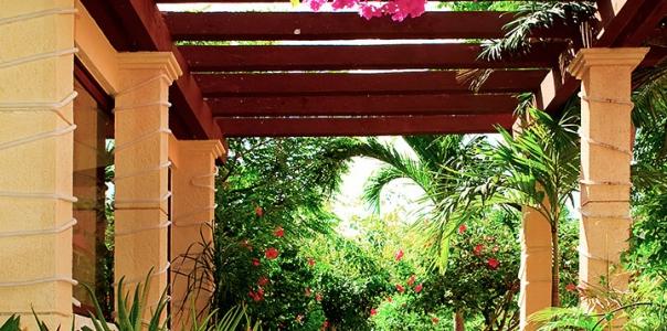 Pergola Inspired Terrace