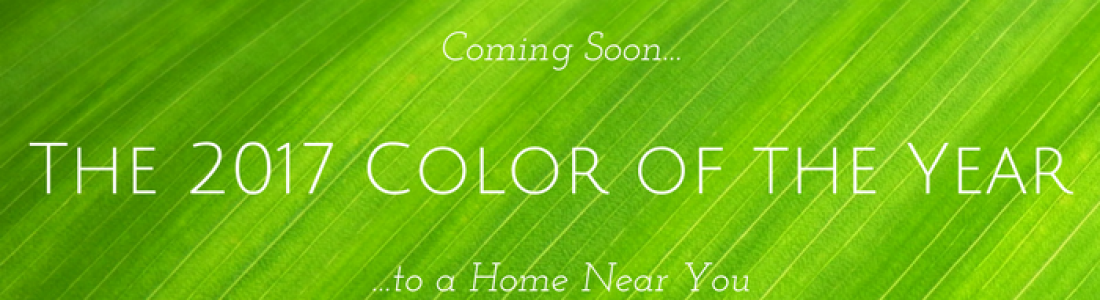 Coming Soon to a Home Near You – the 2017 'Color of the Year'
