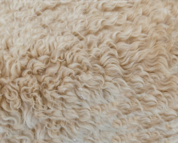 Inside Interior Design: The Advantages of Wool Rugs